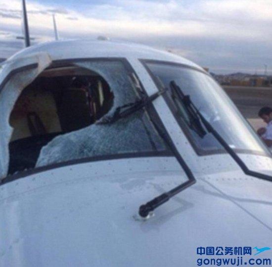 巴西私人飞机遭秃鹰撞击 玻璃被撞出大洞